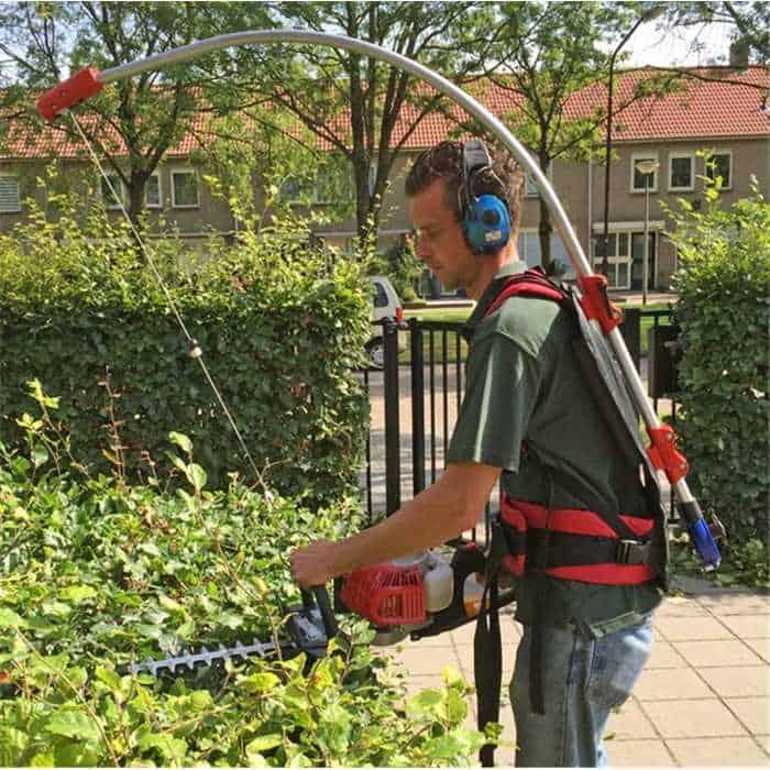 tailler arbre jardin